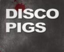 disco-pigs-78-e1452304100629