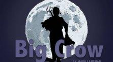 big-crow-bnw